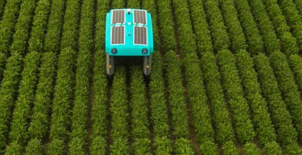 robot agricolo solare