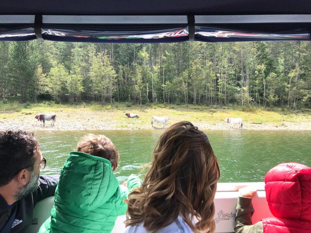 Il paesaggio che si vede dalla barca elettrica