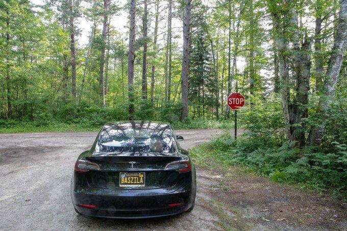 Driessen Tesla