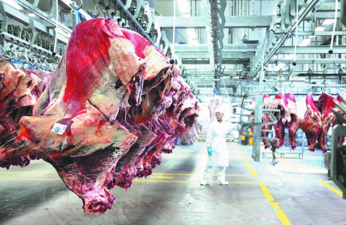 Il big della carne
