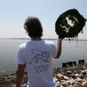 manifestazione ecologica